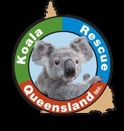 Koala Rescue Queensland