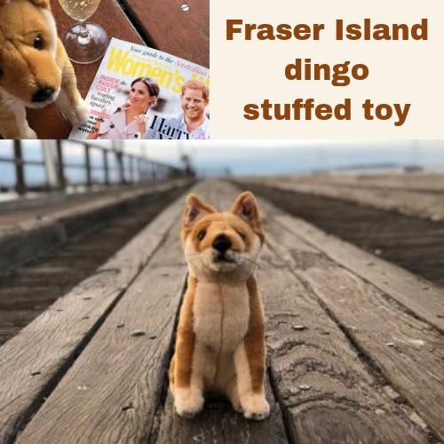 Bocchetta Dingo welcomes Royals to Fraser Island