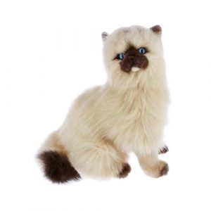 Bocchetta Toffee Himalayan Cat Stuffed Animal Soft Plush Toy, 34 cm Height