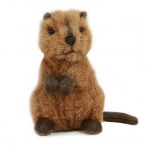 Bocchetta-Edward Quokka Stuffed Animal Soft Plush Toy