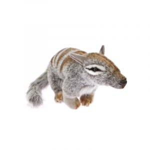 Bocchetta Sherbet Numbat Banded Anteater Stuffed Animal Soft Plush Toy, 28 cm Height