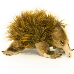 Bocchetta-Harry Echidna Stuffed Animal Soft Plush Toy