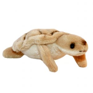 Bocchetta-Mini Turtle Stuffed Animal Soft Plush Toy