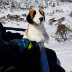 furtastic friend realistic quality plush toy st bernard