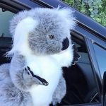 Furtastic Friend Realistic Quality Plush Toy